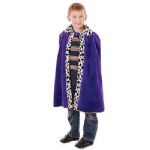 KINGS QUEENS PURPLE CAPE CLOAK WISE MAN FANCY DRESS COSTUME